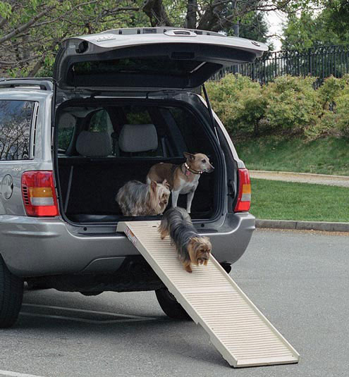 dogs using petstep ramp